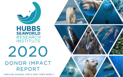 2020 Donor Impact Report